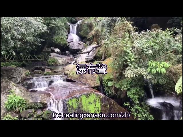 療愈聲音-大自然聲音:瀑布聲/瀑布音-净化/冥想音樂/放鬆/靜心/安穩/背景聲