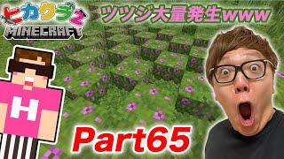 【ヒカクラ2】Part65- 念願のツツジがまさかの大量発生www 1.17アプデ要素【マインクラフト】のサムネイル