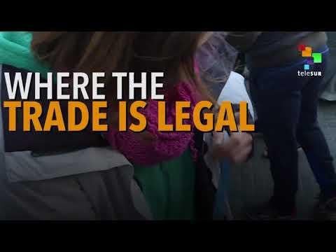 Banks Threaten Uruguay's Cannabis Sale