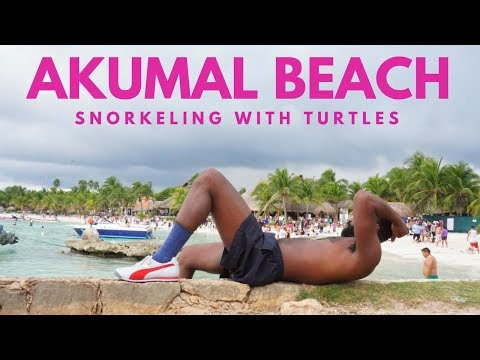 What To Do in Akumal Beach Mexico? |  Travel Guide