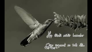 Sinek Kuşu   Şiir: Zabit KARAKÖSE   Ses: Mesud UZ