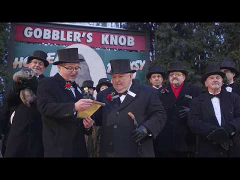 Groundhog Day 2017: Watch Punxsutawney Phil's prediction
