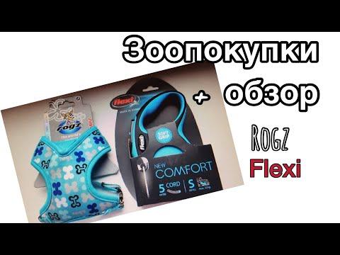 Зоопокупки. Обзор шлейки-манишки от Rogz и Рулетки Flexi New Comfort