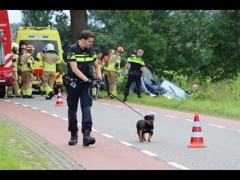 Ernstig ongeval in De Lutte; hond wijkt niet van de zijde van baasje