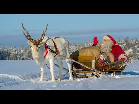 Pello - Santa Claus Reindeer Land In Lapland In Finland - Arctic Circle -  Joulupukki
