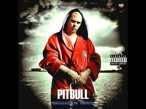 Pitbull - Reggaeton Remix (Full Album)