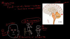 hqdefault - Spreading Cortical Depression Physiology