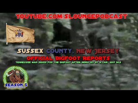 Sussex County NJ Bigfoot Sightings 2017 - SLP545