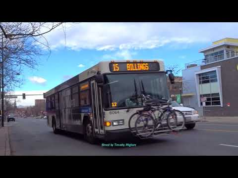 Buses in Denver, Colorado 2018