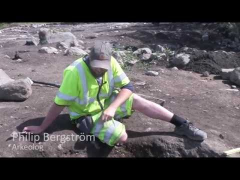 Fyrislund - Om några gravfynd
