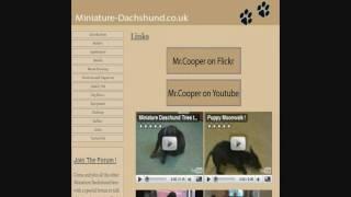 Miniature-dachshund.co.uk