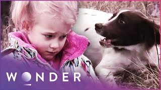 Dog Protects Young Girl In Extreme Danger | Pet Heroes S1 EP23 | Wonder