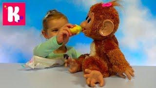 Обезьянка Fur Real Friends интерактивная игрушка распаковка Cuddles my Giggly Monkey unboxing