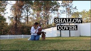 Shallow Violin Cover - Lady Gaga & Bradley Cooper