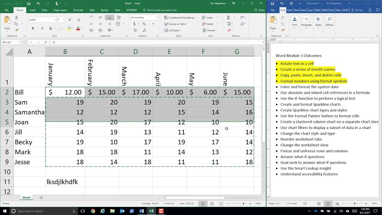Excel Module 1 Lecture Part 1