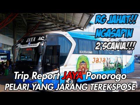 PELARI YANG JARANG TER-EKSPOSE | Trip Report JAYA Ponorogo Pulogebang - Solo