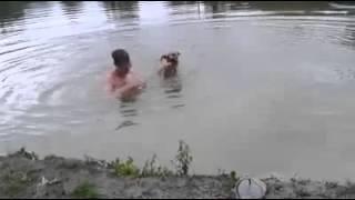 Hero dog rescues man / Обманывать друзей нехорошо