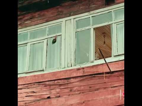 Sucu Kamil Fragman Izle