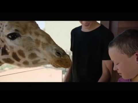 Jamala Wildlife Lodge - Canberra 15 sec TV ad 2017