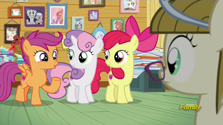 Zipporwhill consults the CMC - Forever Filly