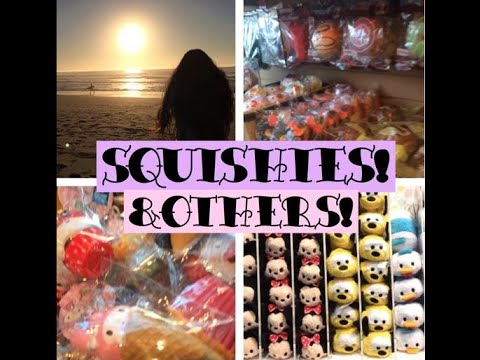Squishy Haul From China : squishy vlog & haul! FunnyCat.TV
