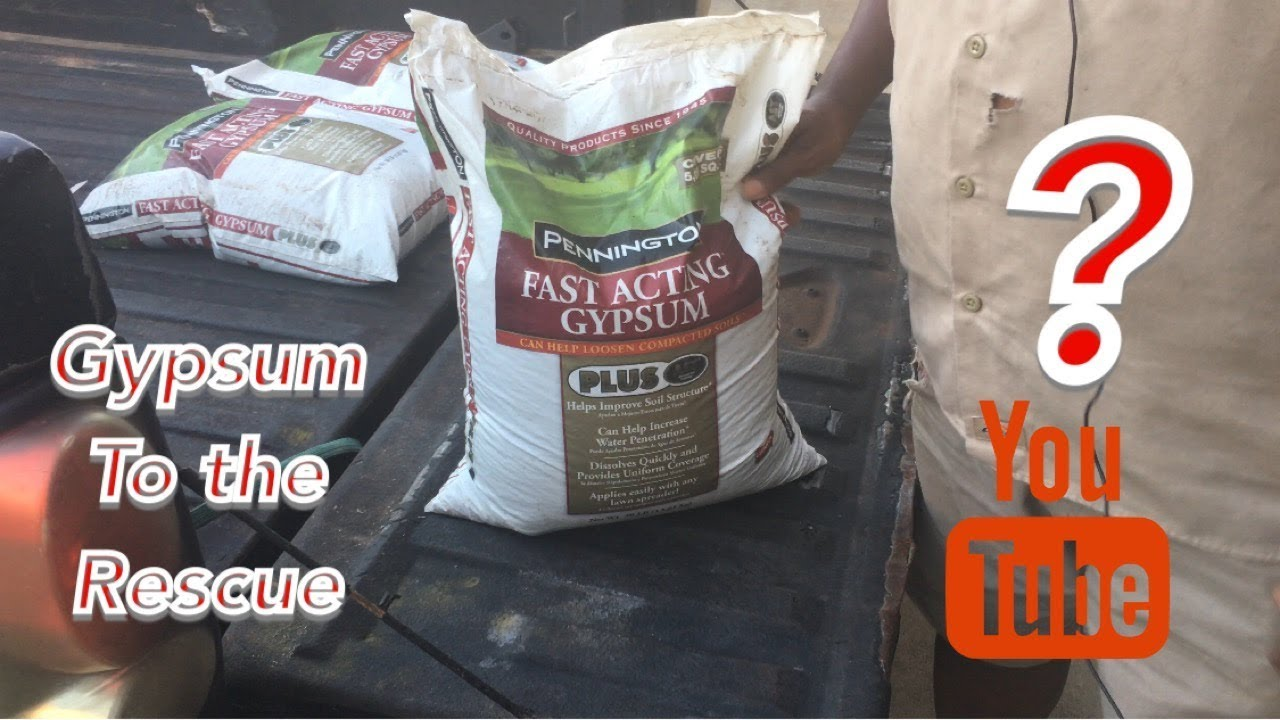 What Is Gypsum And How To Apply It Youtube