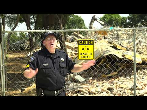 Crusader & Groundhog – Public Service Announcement from Super Dave