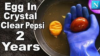 Egg In Crystal Clear Pepsi For 2 Years | Nickipedia
