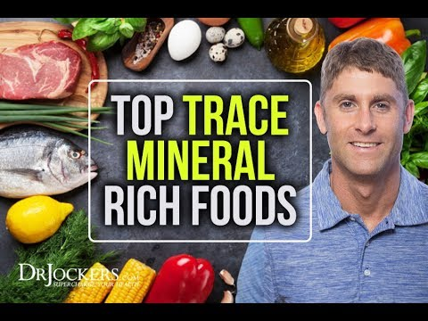 The Top 12 Trace Mineral Rich Foods