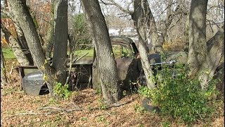 Abandoned Mercury M1 Pickup Truck Growing Trees