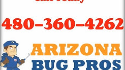 Bed Bugs Paradise Valley AZ (480)360-4262