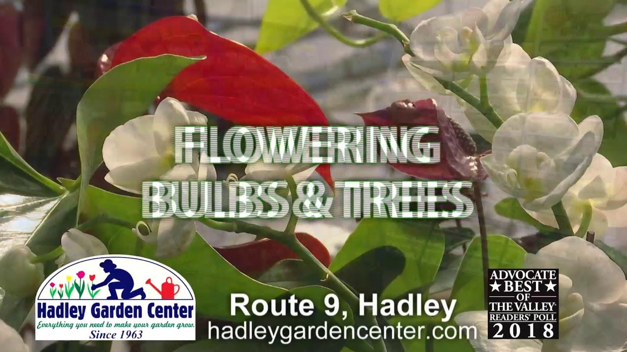 Genial Hadley Garden Center: Western Mass Gardeners Supply And ...