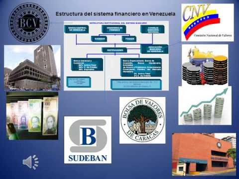 Estructura Del Sistema Financiero En Venezuela