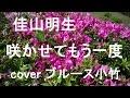 咲かせてもう一度/佳山昭生 cover ブルース小竹