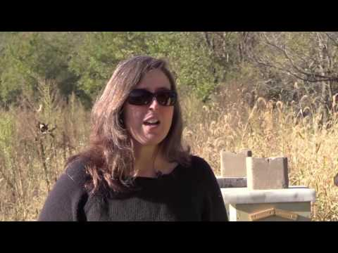 Rhonda Interviews Tammy Horn