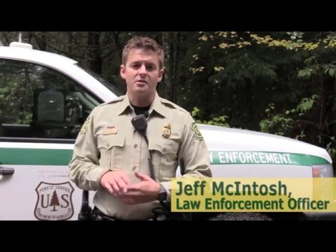 Recreational Shooting: Shooting Safe on your Forest