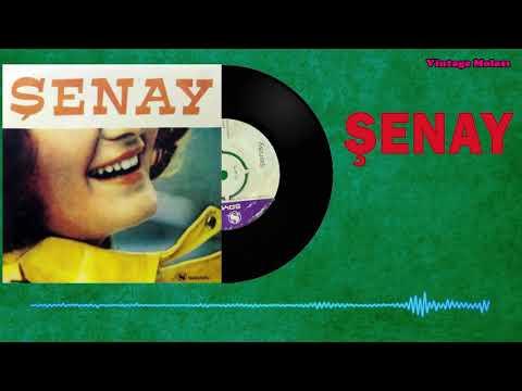 Şenay – En Büyük Şansın Yaşıyor Olman 1972 (Orjinal Plak Kaydı)