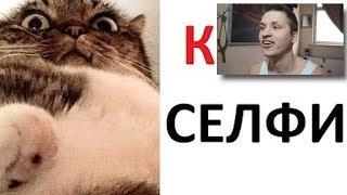 Лютые приколы. Кот сделал селфи  Реакция на Max Maximov