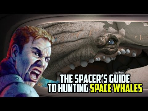 The Spacer's Guide To Hunting SPACE WHALES