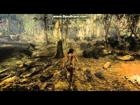 Tomb Raider с читами 2013