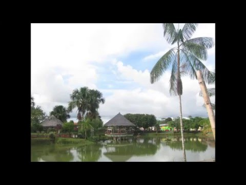 Marañon River -Nauta -Peru 2016