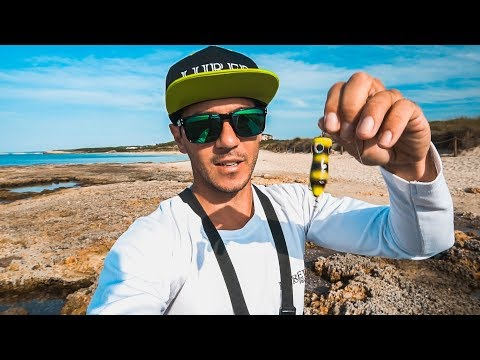 SPINNING y FLY FISHING para PALOMETONES en PLAYA CRISTALINA | Lured Vlog 61