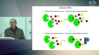 С.А. Еремин – Определение лекарств и наркотиков иммунохимическими методами анализа
