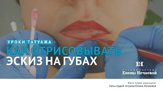 Отрисовка эскиза губ. #татуаж #татуаж_обучение