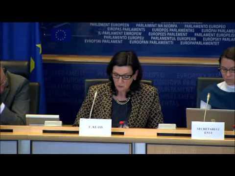 04. Juni 2013: Aussprache mit dem designierten kroatischen Kommissar Neven Mimica