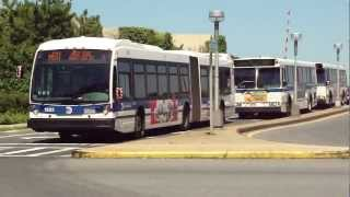 MTA NYC Bus: LaGuardia Airport Conga Line Bus Madness (M60, Q47, Q48,Q69,& NIS Buses)