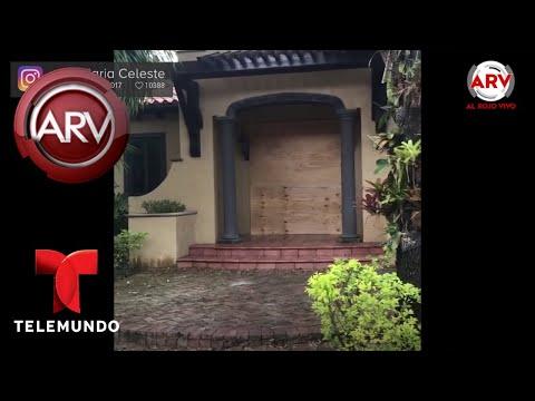 María Celeste toma esta difícil decisión | Al Rojo Vivo | Telemundo