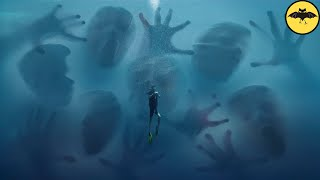 Divers Killed by Mysterious Beings in the Deep.