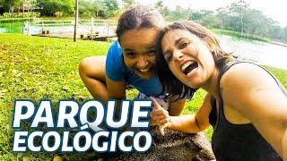 Parque Ecológico Rio Formoso - Bonito, MS - Marola Com Carambola