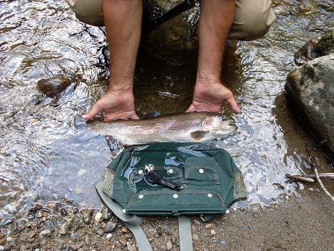 Jiggin' Jerry Fishing For River Trout In Cherokee North Carolina